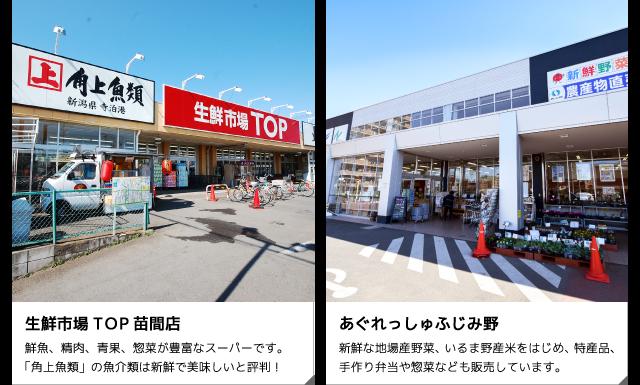 生鮮市場TOP苗間店・あぐれっしゅふじみ野
