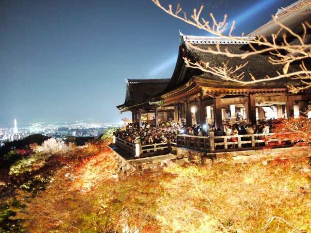 秋の清水寺✨
