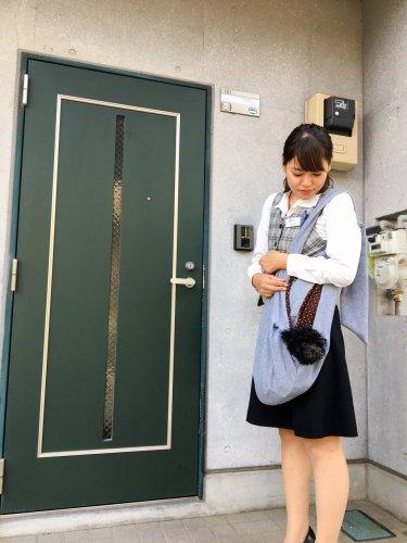 ペット可 黒プー 東大宮01
