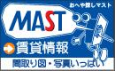 MASTweb