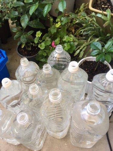 水やり用のペットボトル
