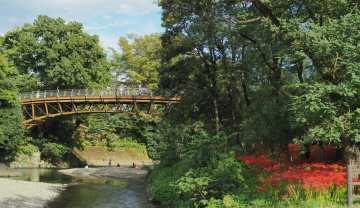 高麗川にかかるあいあい橋