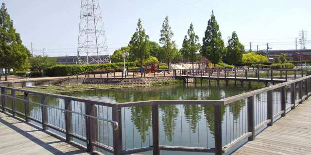 播磨町北本荘の石ヶ池公園のご紹介♪