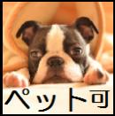 ペット相談可物件☆