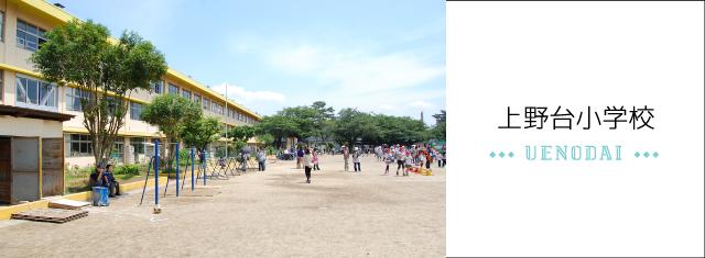 上野台小学校