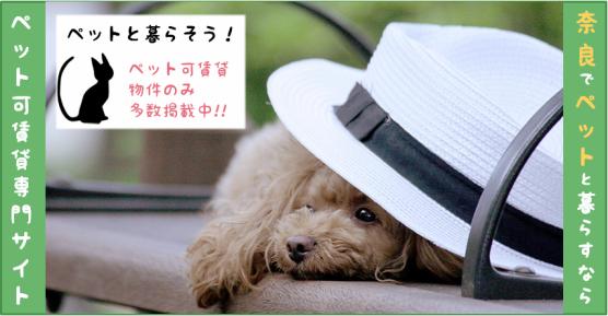 奈良でペットと暮らすなら、ペット可賃貸専門サイト