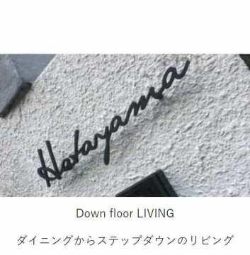 down floor LIVING