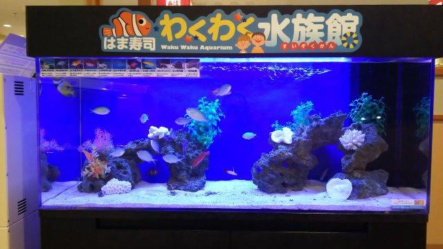 お寿司屋さんの待合のところに わくわく水族館♪