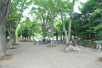 蕨市民公園