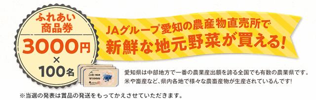 JAグループ愛知の農産物直売所で新鮮な地元野菜が買える!