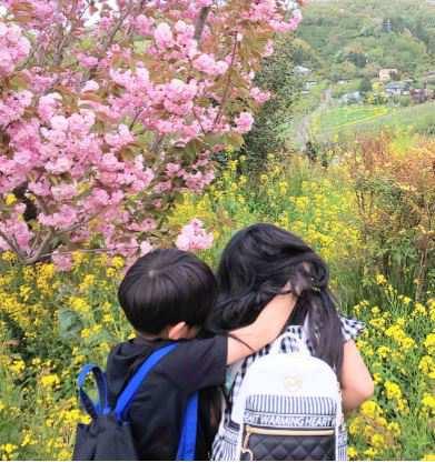 花見山㏌福島 写真奥の菜の花がハートになってるよ💛