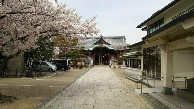 桜が満開♪ 人丸山 柿本人麻呂神社♪