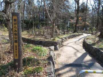 根がらみ坂公園