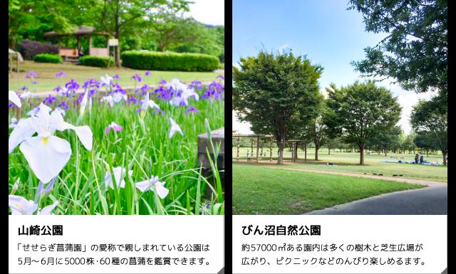 山崎公園・びん沼自然公園