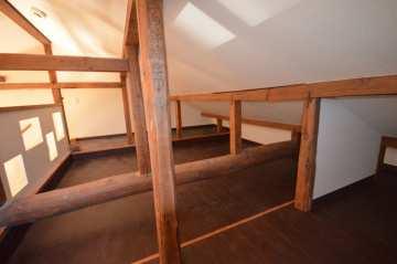 居室/天井