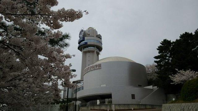 桜が満開♪ 明石市立天文科学館♪