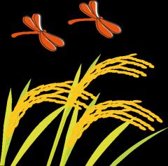 赤とんぼと稲
